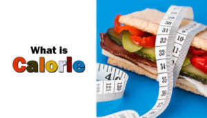 What is Calorie