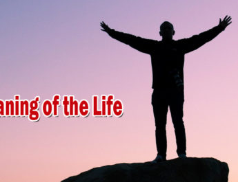 Meaning of the Life